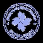 Albanian - American Womens's Organization